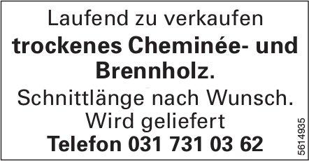 Trockenes Cheminée- und Brennholz laufend zu verkaufen