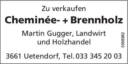 Cheminée- + Brennholz zu verkaufen - Martin Gugger, Landwirt und Holzhandel