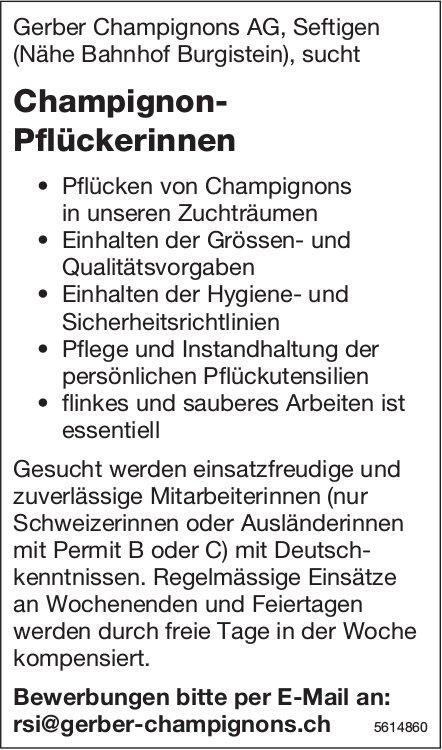 Champignon-Pflückerinnen bei Gerber Champignons AG gesucht
