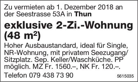 Exklusive 2-Zi.-Wohnung (48 m2) in Thun zu vermieten