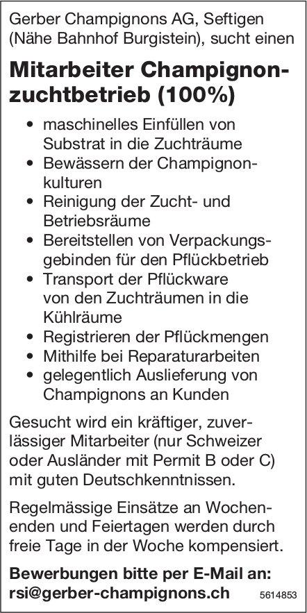 Mitarbeiter Champignonzuchtbetrieb (100%) bei Gerber Champignons AG gesucht