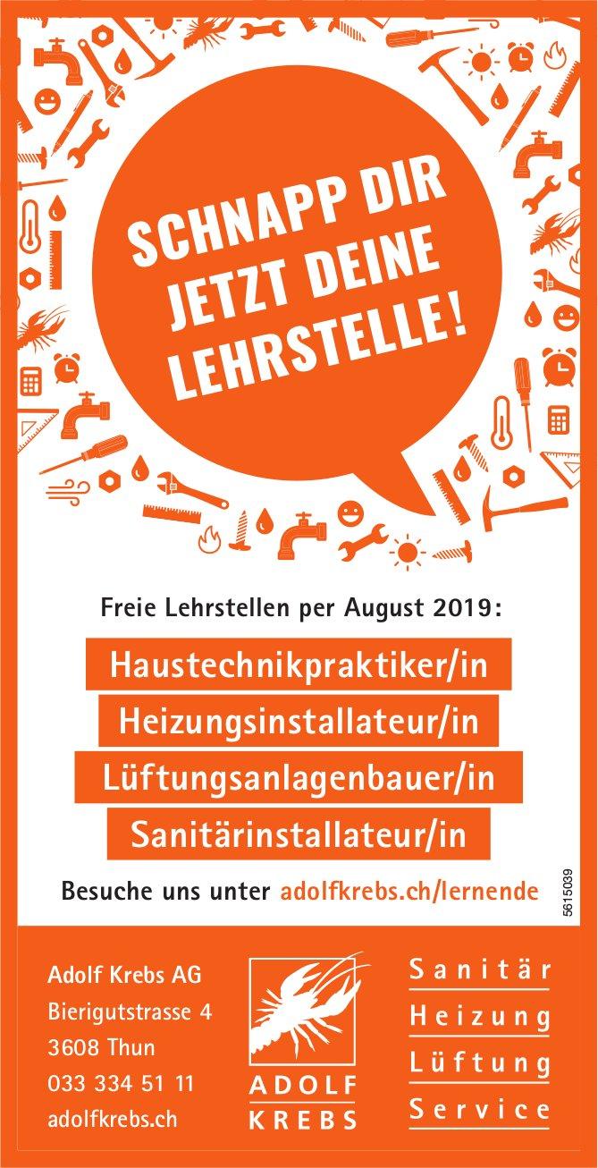 Freie Lehrstellen per August 2019, Adolf Krebs AG, Thun