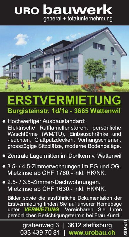 Erstvermietung Wohnungen in Wattenwil