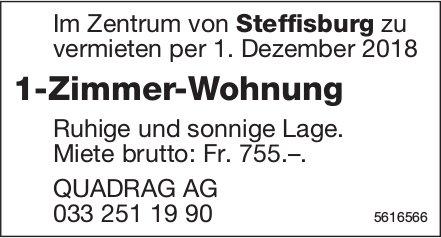 1-Zimmer-Wohnung im Zentrum von Steffisburg zu vermieten