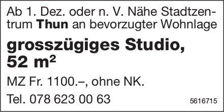 Grosszügiges Studio, 52 m2 Nähe Stadtzentrum Thun zu vermieten