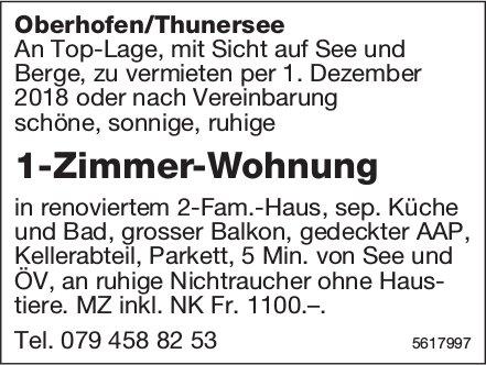 1-Zimmer-Wohnung in Oberhofen/Thunersee zu vermieten