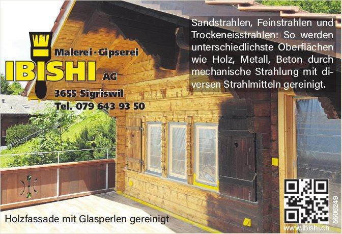 IBISHI AG, Sigriswil - Malerei / Gipserei
