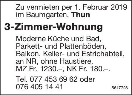 3-Zimmer-Wohnung im Baumgarten, Thun, zu vermieten