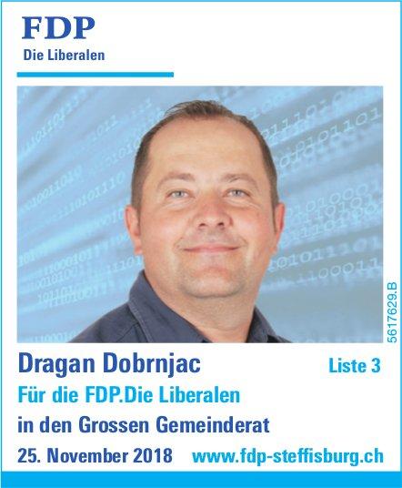 Dragan Dobrnjac in den Grossen Gemeinderat