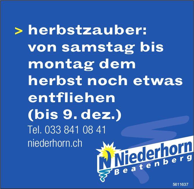 Niederhorn Beatenberg - Herbstzauber: von Samstag bis Montag dem Herbst noch etwas entfliehen