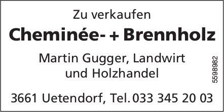 Cheminée- + Brennholz zu verkaufen - Martin Gugger