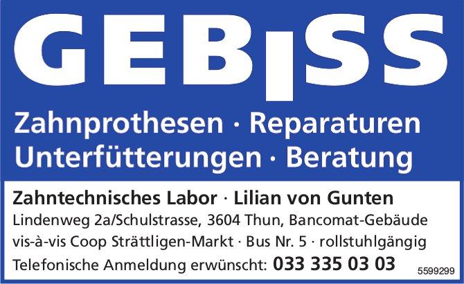 Zahntechnisches Labor, Lilian von Gunten, Thun - GEBISS, Zahnprothesen, Reparaturen
