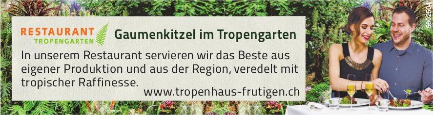 Gaumenkitzel im Tropengarten - Tropenhaus Frutigen