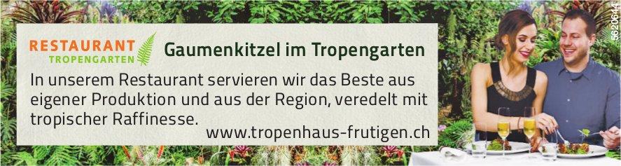 Gaumenkitzel im Tropengarten, Tropenhaus Frutigen