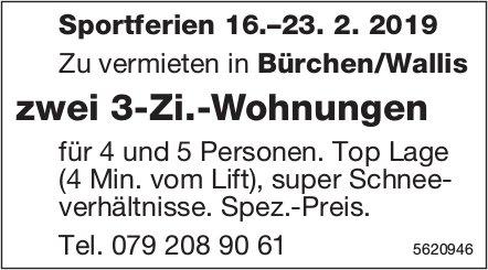 Zwei 3-Zi.-Wohnungen für Sportferien 16.–23. 2. 2019 in Bürchen/Wallis zu vermieten