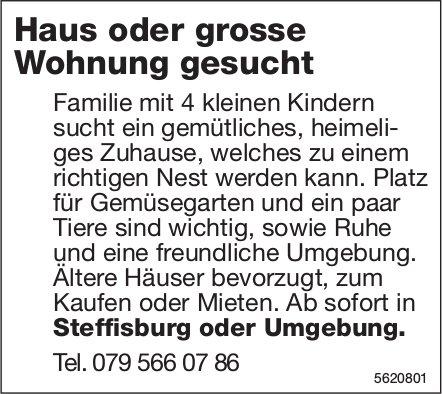 Haus oder grosse Wohnung Steffisburg oder Umgebung gesucht