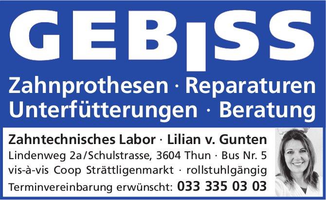 Zahntechnisches Labor, Lilian v. Gunten, Thun - Zahnprothesen, Reparaturen etc.