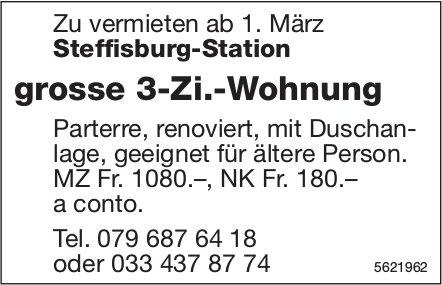Grosse 3-Zi.-Wohnung in Steffisburg-Station zu vermieten