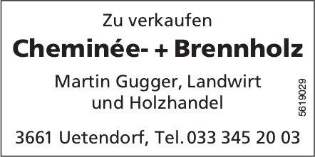 Cheminée- + Brennholz zu verkaufen - Martin Gugger, Landwirt
