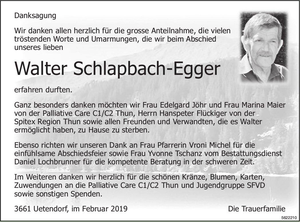 Schlapbach-Egger Walter, im Februar 2019 / DS