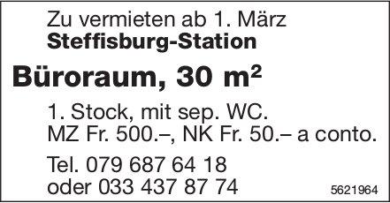 Büroraum, 30 m2 in Steffisburg-Station zu vermieten