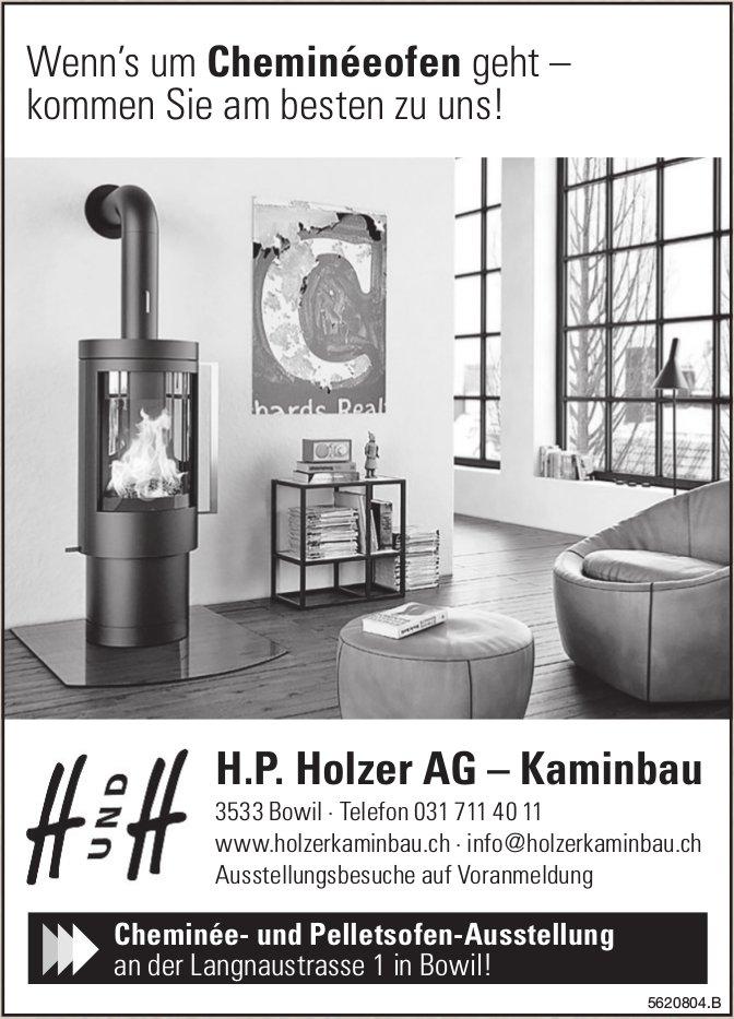 H.P. Holzer AG, Kaminbau - Wenn's um Cheminéeofen geht, kommen Sie am besten zu uns!