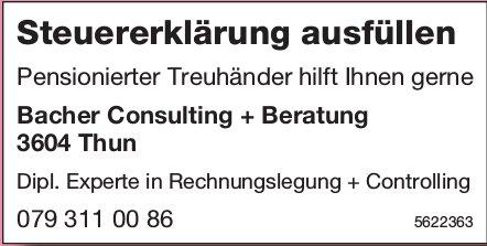 Bacher Consulting + Beratung, Thun - Steuererklärung ausfüllen