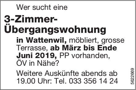 3-Zimmer- Übergangswohnung in Wattenwil zu vermieten
