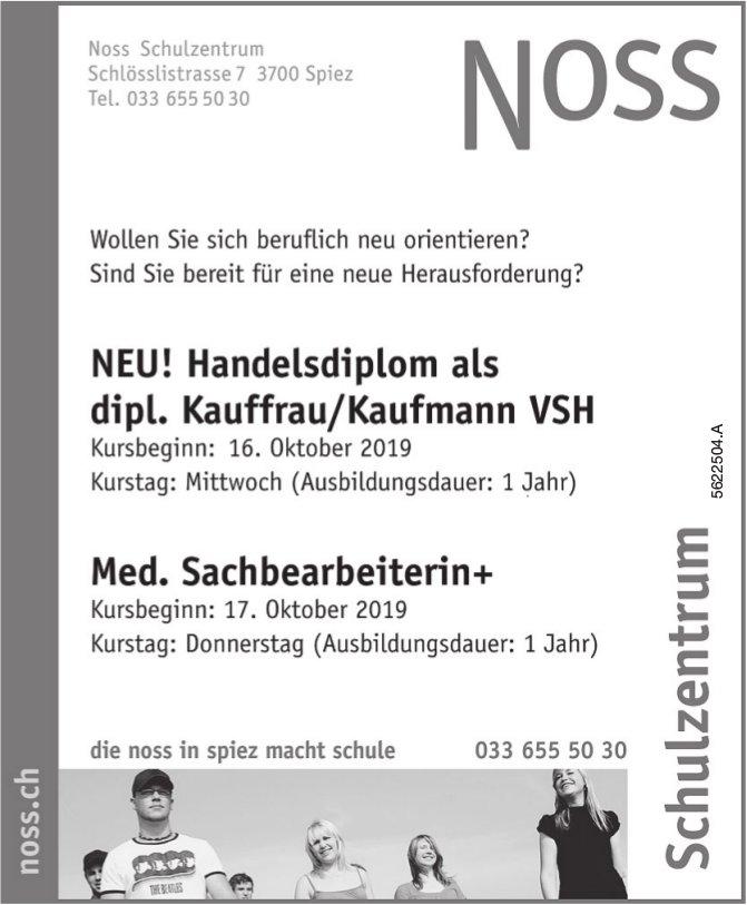Noss Schulzentrum, Spiez - NEU! Handelsdiplom, dipl. Kauffrau/Kaufmann VSH & Med. Sachbearbeiterin+