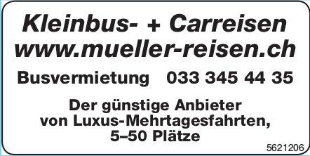 Kleinbus- + Carreisen - Busvermietung