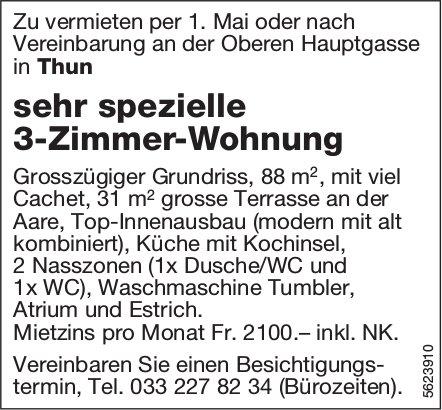 Sehr spezielle 3-Zimmer-Wohnung in Thun zu vermieten