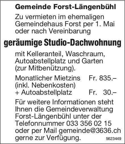 Geräumige Studio-Dachwohnung im ehemaligen Gemeindehaus Forst zu vermieten