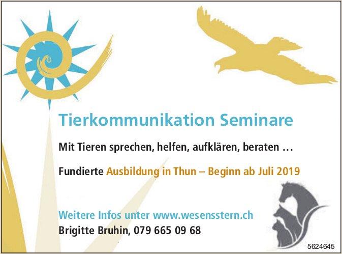 Tierkommunikation Seminare - Fundierte Ausbildung in Thun – Beginn ab Juli 2019