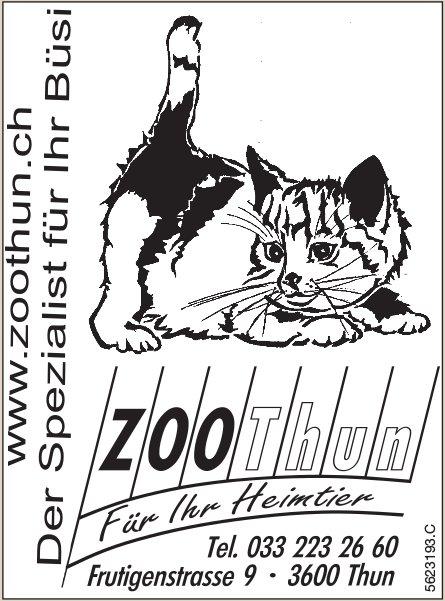 Zoo Thun - Der Spezialist für Ihr Büsi!