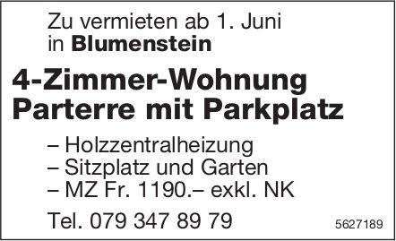 4-Zimmer-Wohnung Parterre mit Parkplatz in Blumenstein zu vermieten
