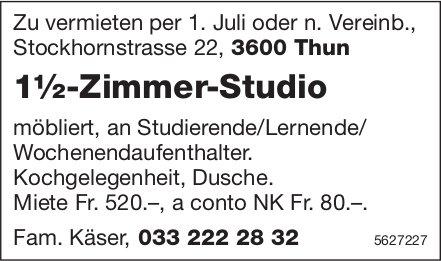 1½-Zimmer-Studio in Thun zu vermieten