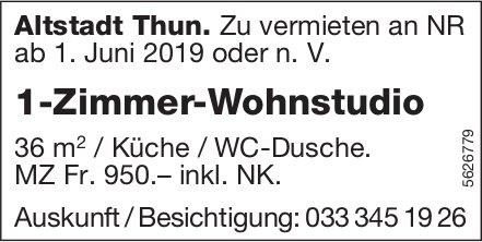 1-Zimmer-Wohnstudio in Altstadt Thun zu vermieten