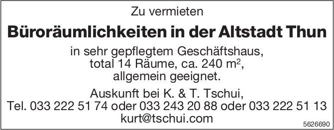 Büroräumlichkeiten in der Altstadt Thun zu vermieten