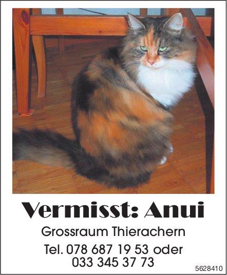 Vermisst: Anui - Grossraum Thierachern