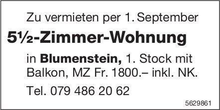 5½-Zimmer-Wohnung in Blumenstein zu vermieten
