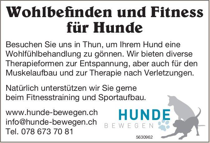 HUNDE BEWEGEN - Wohlbefinden und Fitness für Hunde