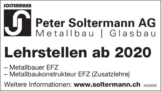 Lehrstellen ab 2020, Peter Soltermann AG, zu vergeben