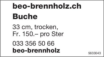 beo-brennholz - Buche 33 cm, trocken, Fr. 150.– pro Ster