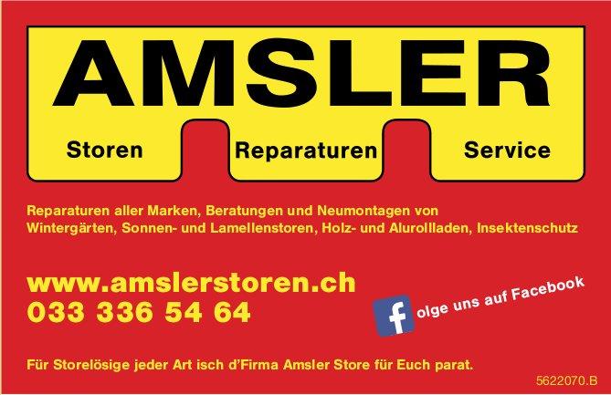 AMSLER - Für Storelösige jeder Art isch d'Firma Amsler Store für Euch parat.