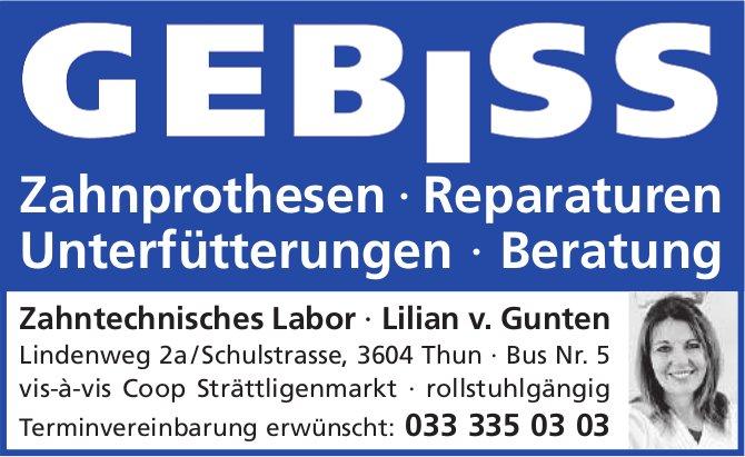 Zahntechnisches Labor, Lilian v. Gunten, Thun - Zahnprothesen,  Reparaturen