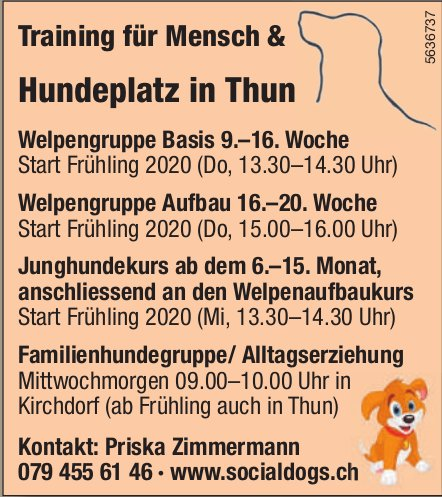 Hundeplatz in Thun - Training für Mensch & Hund