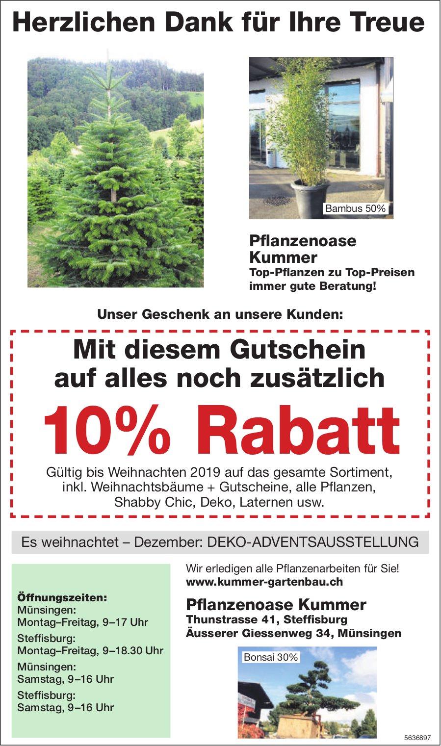 Pflanzenoase Kummer - Herzlichen Dank für Ihre Treue/Gutschein auf alles noch zusätzlich 10% Rabatt
