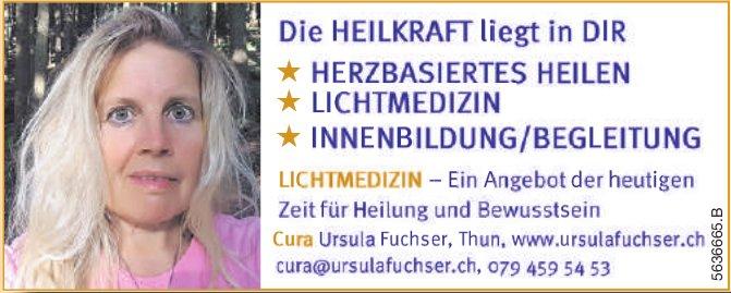 Cura Ursula Fuchser - Die HEILKRAFT liegt in DIR