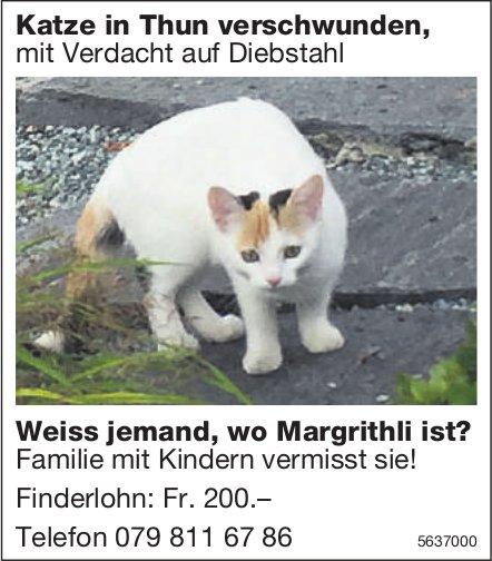 Katze in Thun verschwunden, mit Verdacht auf Diebstahl