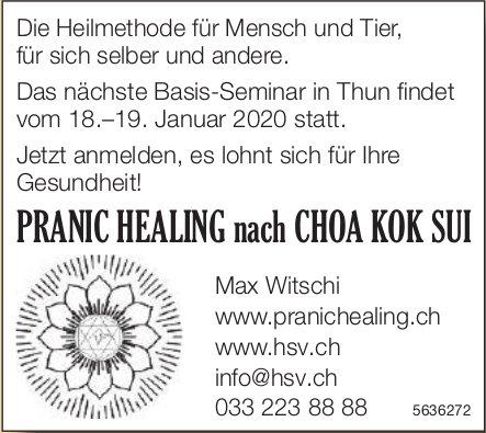 PRANIC HEALING nach CHOA KOK SUI - Nächste Basis-Seminar in Thun: 18.–19. Januar 2020